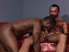 Schwulen Sexfilme